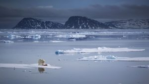 Arctic sea ice maxes out at second-lowest level on record