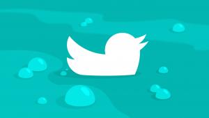 Twitter violates womens' human rights, according to Amnesty International